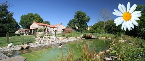 Gites en vende france for Petite piscine naturelle